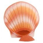 Schelpurn coral bio-urn