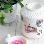 dierenurn miomind foto custom made 2L
