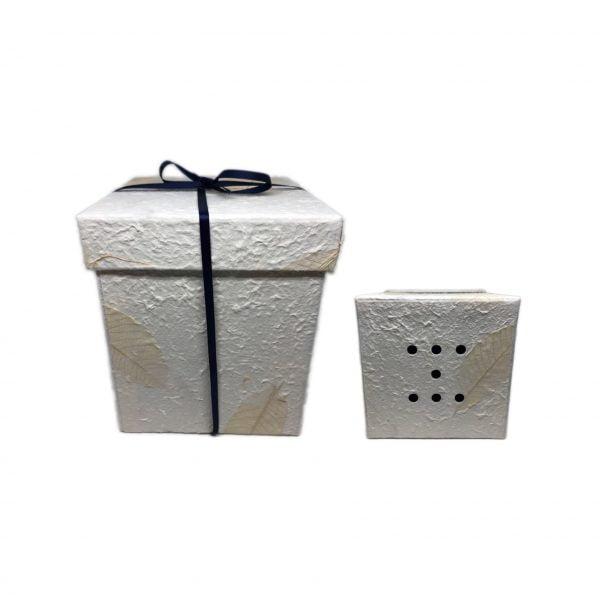 anfibia bio urn cellulose