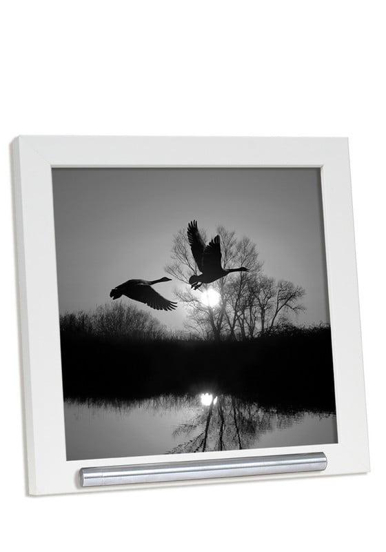 fotolijst met asbusje 20x20 wit of zwart