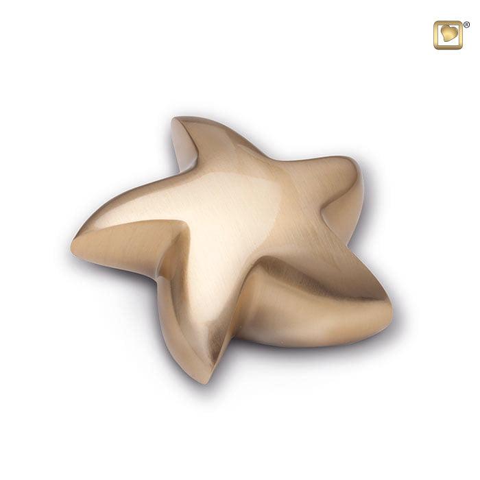 mini urn zeester goudkleurig geborsteld