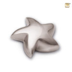 mini urn zeester glanzend of geborsteld