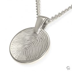 fingerprint assieraad zilver munt
