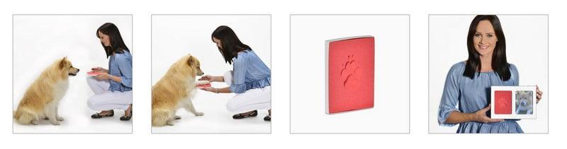 dieren fotolijst met pootafdruk