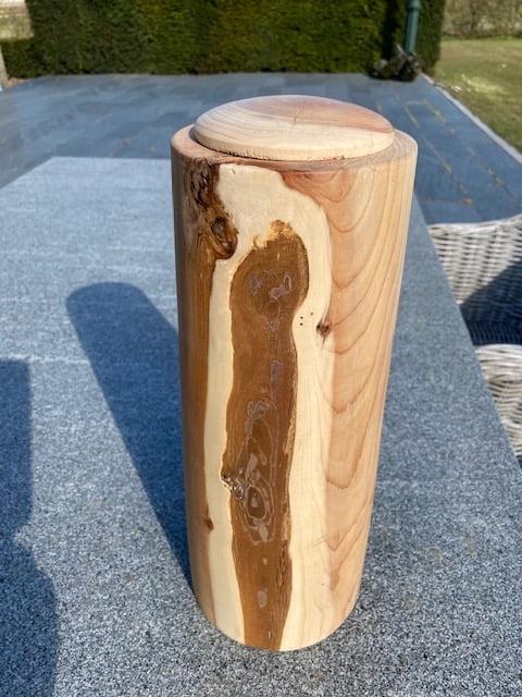 taxus gestreepte hoge natuur urn hout