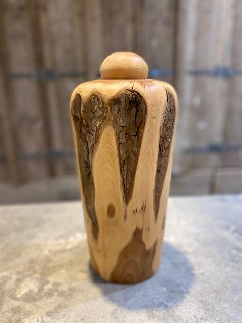 taxus gestreepte hoge natuur urn XL